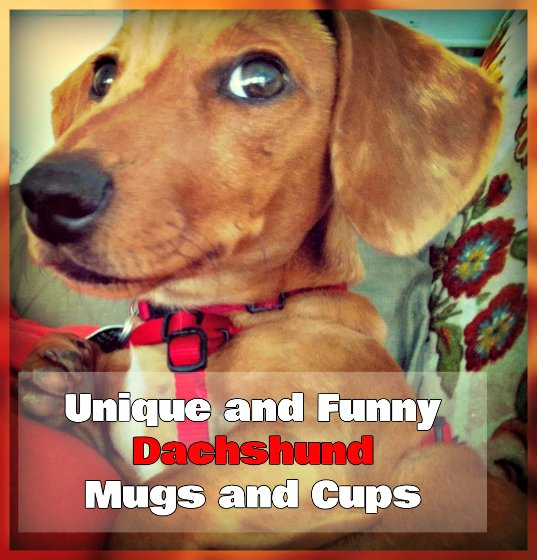 Unique and Funny Dachshund Mugs and Cups